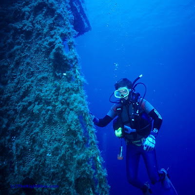 Wreck diver