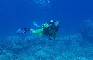 Puako Diver Dan