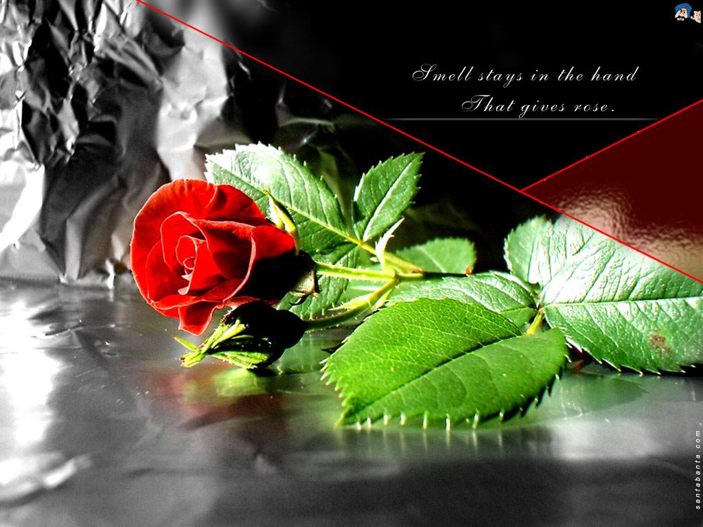 http://4.bp.blogspot.com/_fP1y4T5-DFE/TP_CvttbxDI/AAAAAAAAEk4/iNiM2oLIyEc/s1600/mot54v.jpg