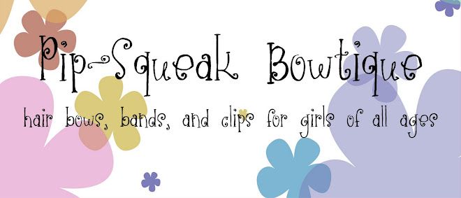 Pip-Squeak Bowtique Big Bows