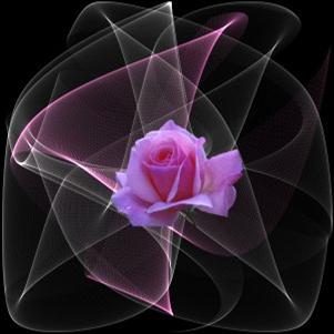 Moldura simples e colorida com flores Montagem de fotos - Montagem De Fotos Flores Lindas