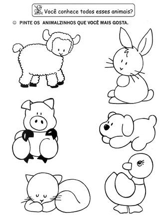 Educação Infantil Cidadã Atividade De Animais