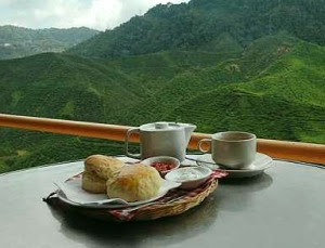 Perfect: Enjoy a cup of tea with scones while looking at this perfect view.