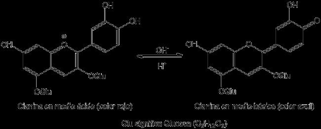el vino blanco tiene acido urico acido urico e insuficiencia renal cronica como prevenir el acido urico