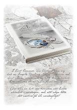 Om du vill beställa boken i från butiken Lev Vackert, KLICKA PÅ BILDEN SLUTSÅLD