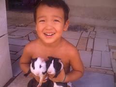 Meu lindo filho e seus  porquinhos Calvin e Tommy