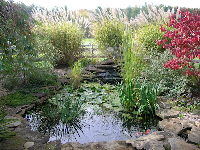Garden Thyme with the Creative Gardener: Ideas for Garden Ponds