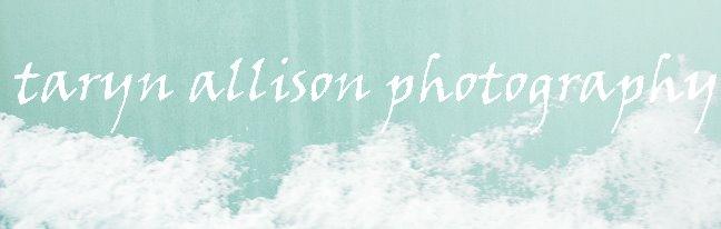Taryn Allison Photography