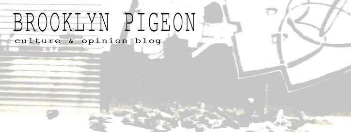 brooklyn pigeon