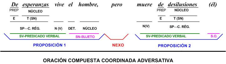 ANÁLISIS DE ORACIONES COORDINADAS SIN NEXOS CORRELATIVOS.