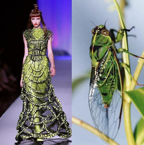 Trick or treat rave insect for Couture fashion designers