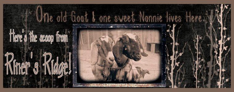 Nannie and Grandpa
