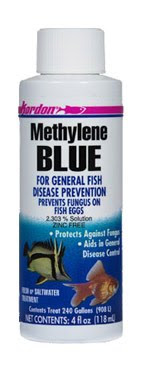 How to protect goldfish eggs from developing fungus and for Methylene blue fish
