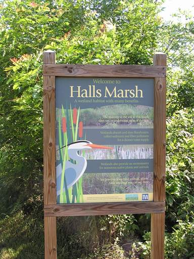 Halls Marsh