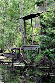 Bayou Shack