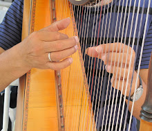 Harpist David Ogalde