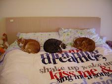 Margot, Jighen e Lupin