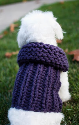 Knitted Coats For Small Dogs Patterns
