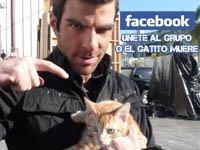 Sylar Destruir Zaragoza's Facebook Profile