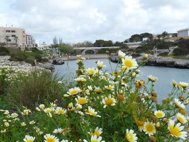 Menorca 2009