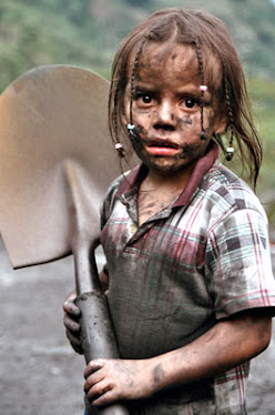 Trabalho Infantil é Crime. Denuncie!!!