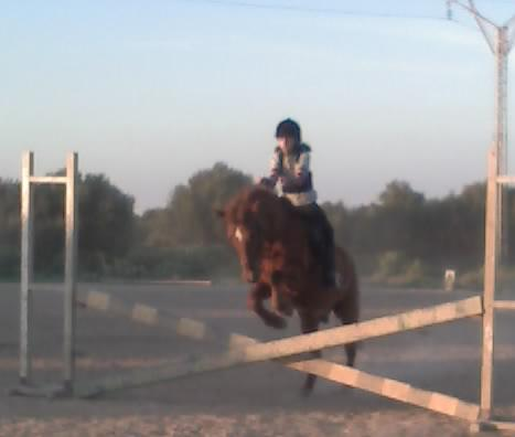 Mini saltoo! ;)