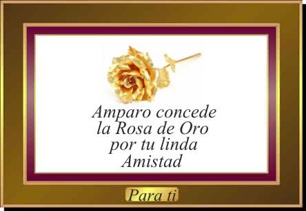 premio otorgado por Amparo