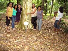 Jardim Botânico de Salvador em dezembro de 2009.