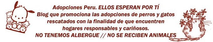 Adopciones Peru