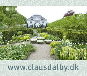 Blomstersknhed hos Claus Dalby
