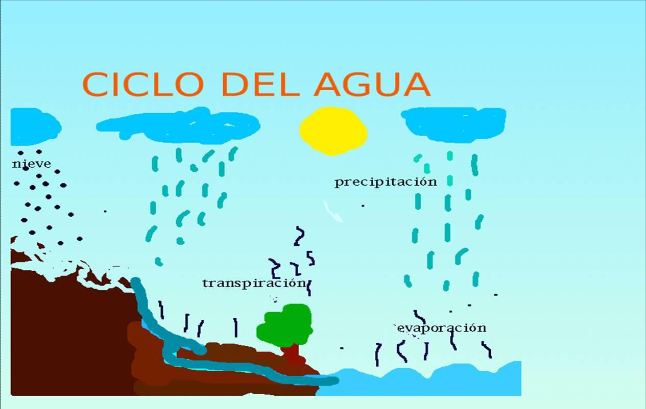 Images of Ciclo Del Agua Dibujo - #SpaceHero