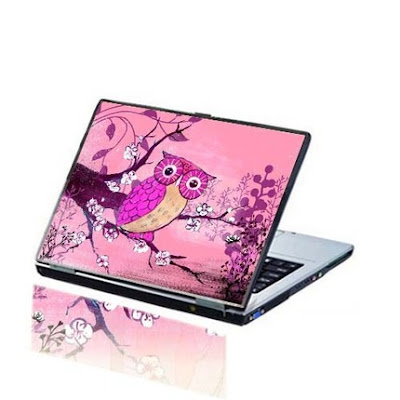 Look what we have found -- a pink laptop skin with a real cute baby owl