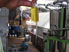 Refined Biodiesel
