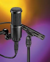 PRACTICA PROFESIONAL DE RADIO
