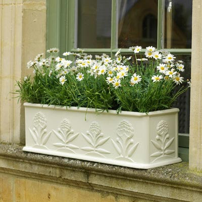 Window garden box
