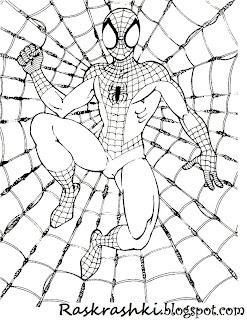 раскрашки для детей с человеком пауком