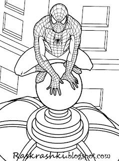 раскрашки с человеком пауком