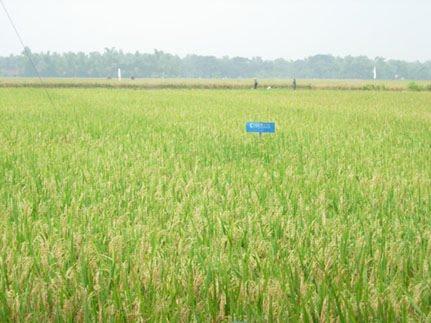 Blog Geografi Tingkatan 1 2 Bab 6 Tanah Tinggi Tanah Pamah