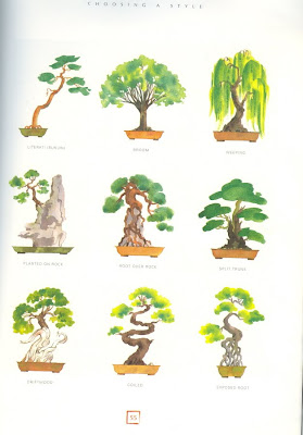 Flowers and weeds bonsai styles for Different kinds of bonsai trees