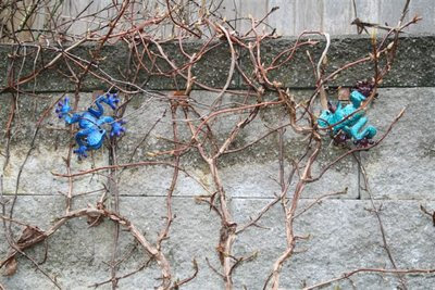 Metal frogs in climbing hydrangea
