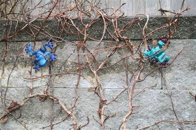 Metal frogs in climbing hydrangea