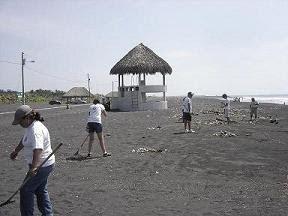 Limpiando Playas