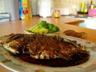 Fry/Roasted Soy Fish