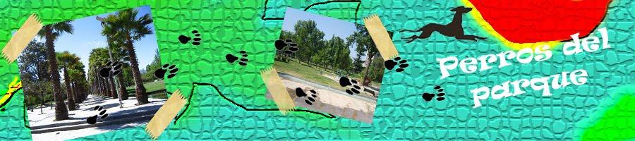 Perros del Parque