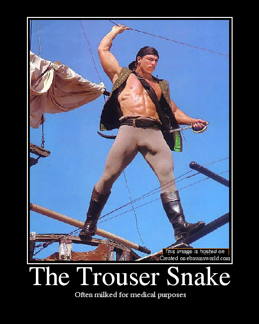 Trouser Snakes http://www.sodahead.com/fun/can-snake-charmers-charm-more-than-snakes/question-1834015/
