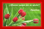 Hermoso despertar ... Gracias AguaLuna.