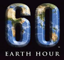 WWF convoca por tercer año la Hora del Planeta 2009.