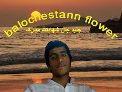 شهید محمد ریگی معروف به جنید