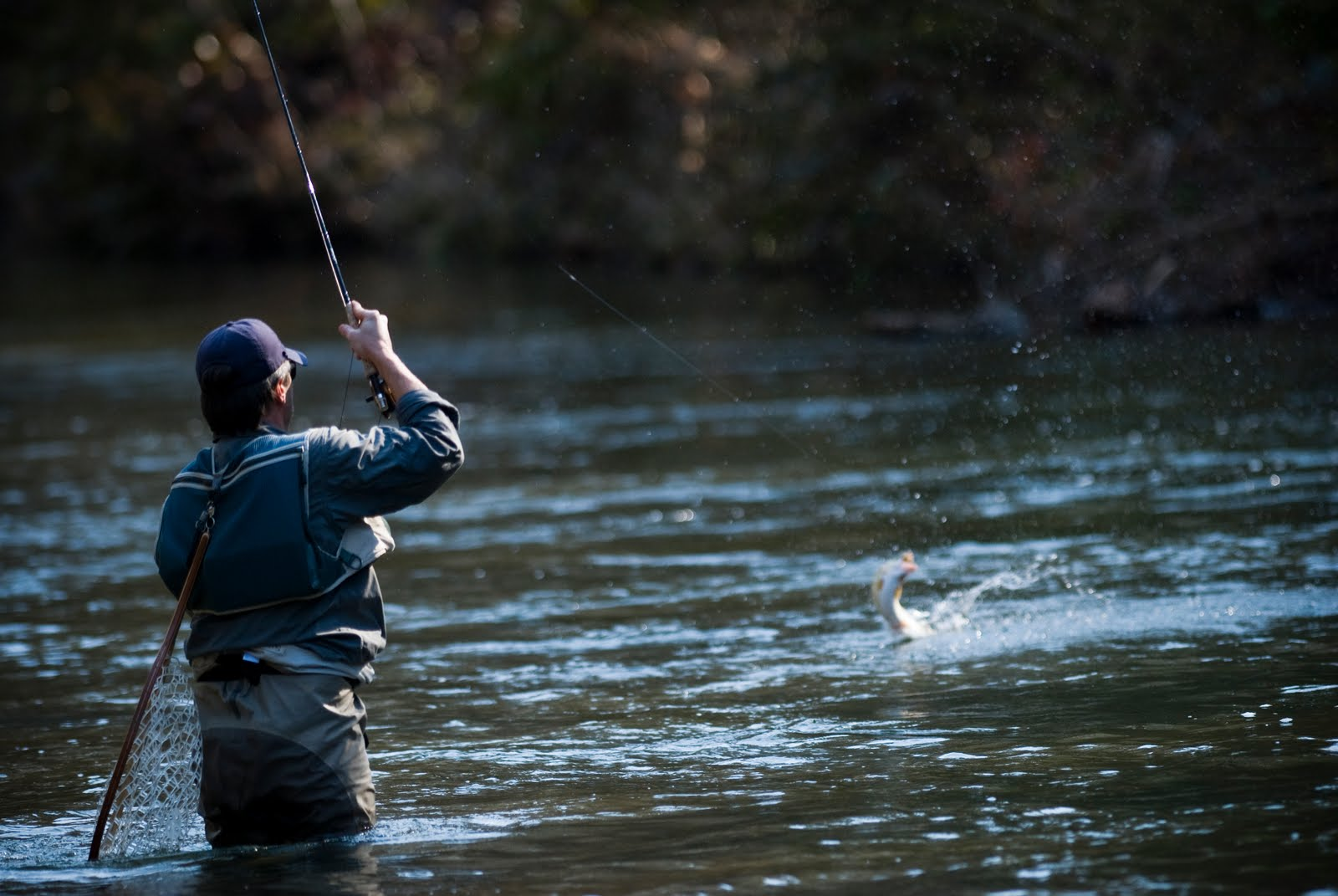 tim harris photojournalist fly fishing