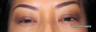 Eyebrow Embroidery - after 2 sessions